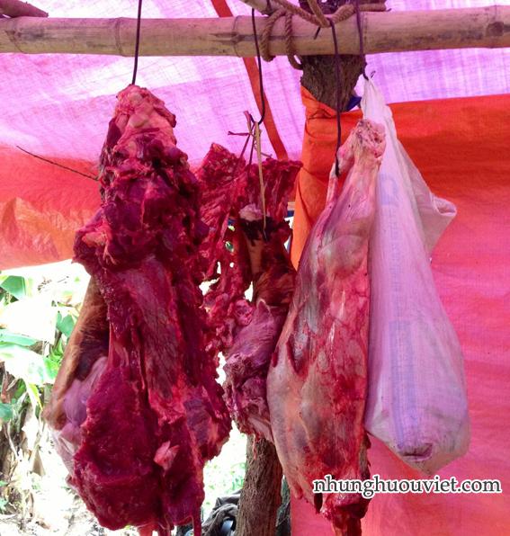 Thịt hươu file